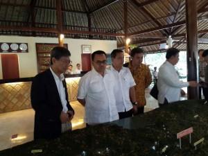 Kunjungan Menteri ESDM Sudirman Said ke KEK Tanjung Lesung