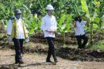 Jokowi Kunjungi Program Padat Karya Tunai Jaringan Irigasi di Jawa Tengah
